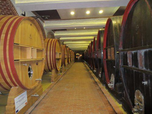 Wine Tour Choosen (8) edt